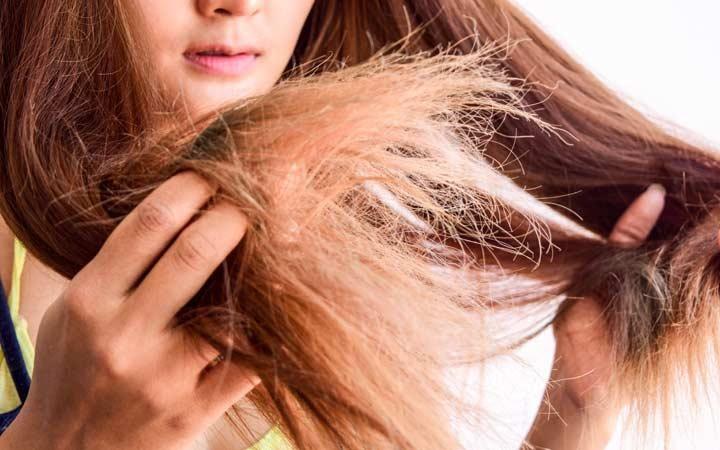 Tóc hư tổn gây ra khô xơ, chẻ ngọn và thiếu sức sống