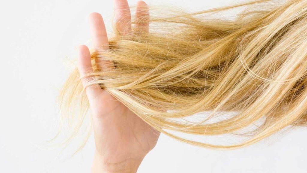 Gội đầu mỗi ngày cũng là nguyên nhân khiến tóc mất đi độ ẩm tự nhiên